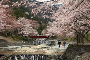 大津谷公園(7)