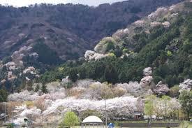 池田山 大津谷公園