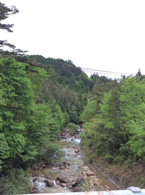 雨上がりの木曽は新緑が冴えて冷んやりした空気が心地よい(^^)